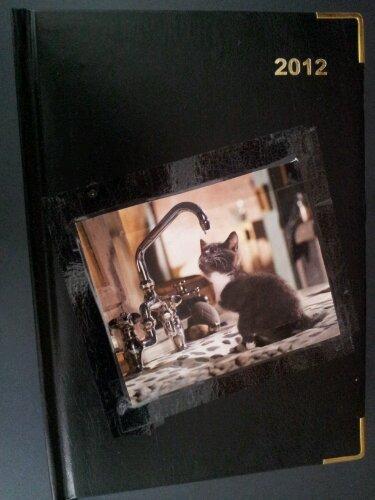 diary cat 2012