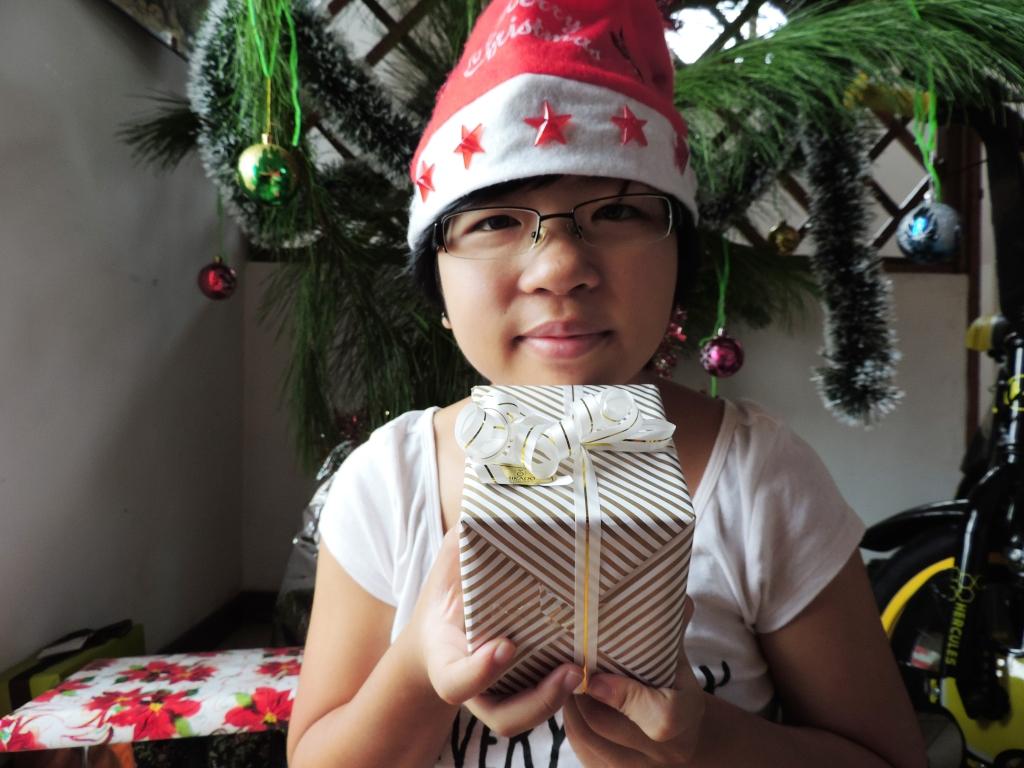 one last christmas gift