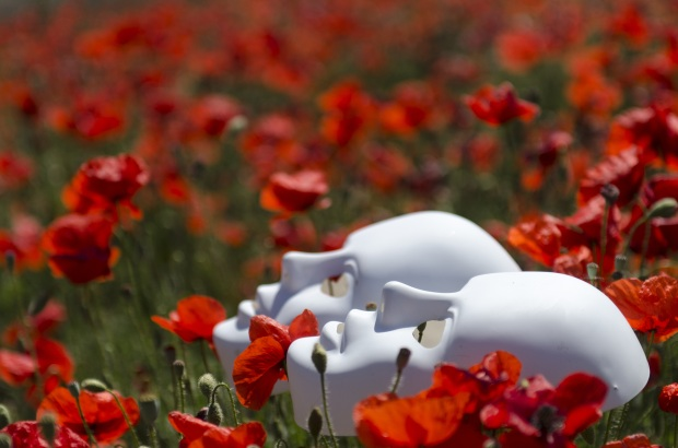 mask-poppies-field-red